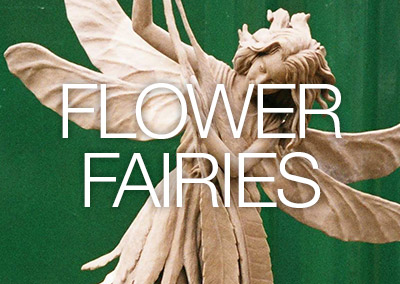 perudo-feature-flower-fairies