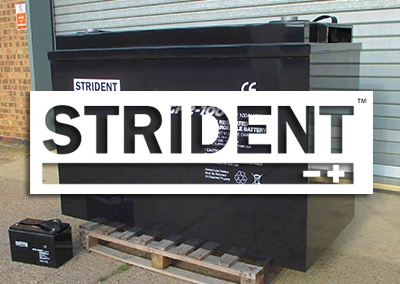 perudo-feature-strident